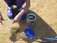 Park Explorer Playkit investigating