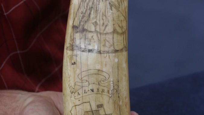 Scrimshaw Walrus Tusk, ca  1850   Antiques Roadshow   PBS