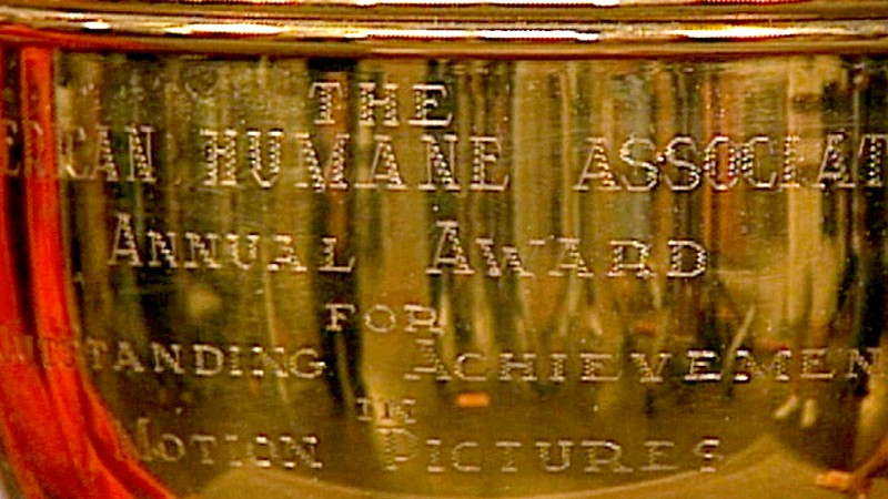 American Humane Association Trophy Antiques Roadshow Pbs