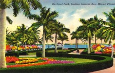 Watch | All Our Appraisals from Miami Beach
