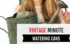 Vintage Minute | Watering Cans