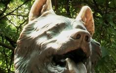 Exclusive: The Balto in Central Park