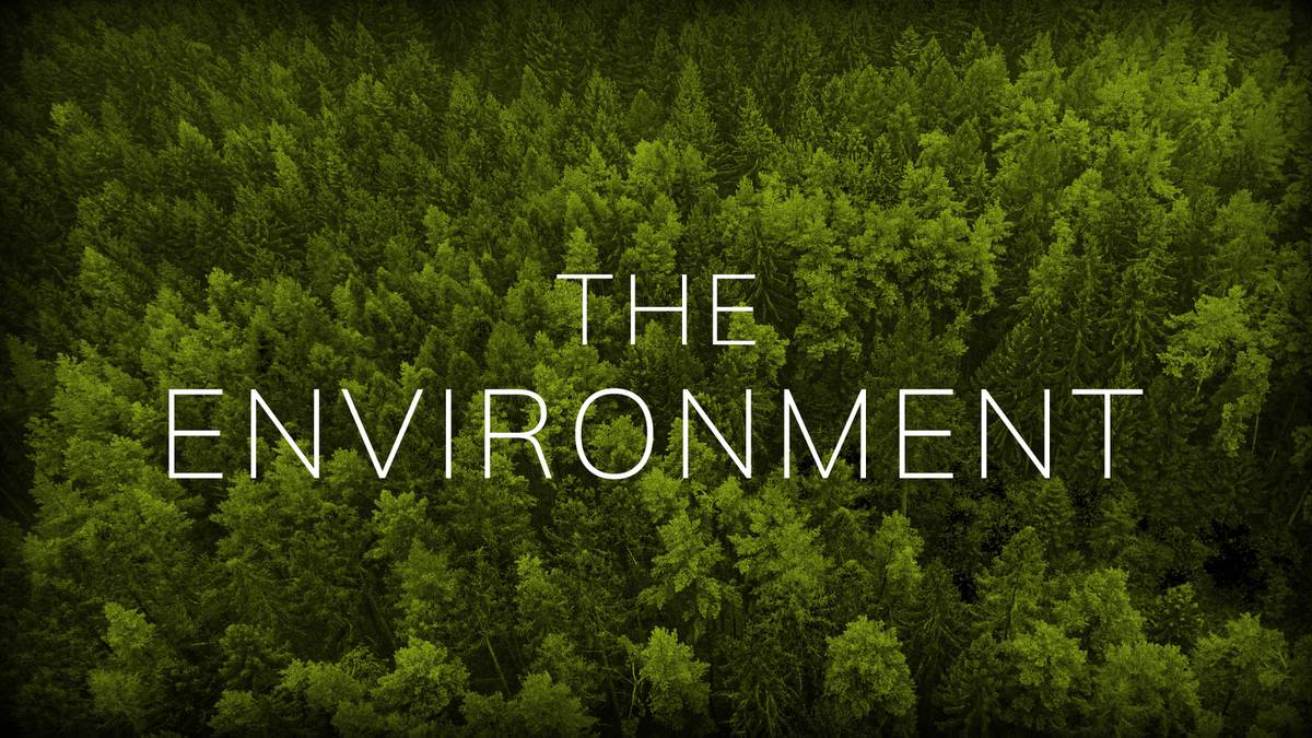 The Environment American Experience Official Site Pbs