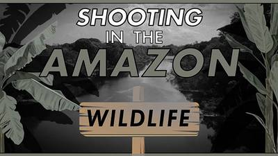 Filming with Wildlife poster image