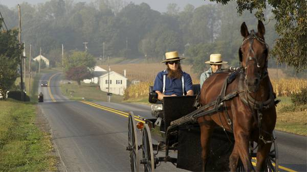 Questions About the Amish