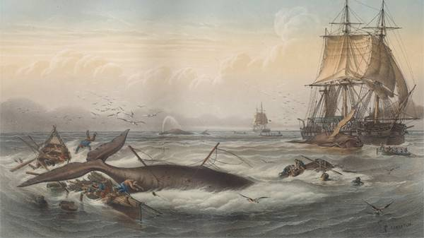 The History of Whaling in America