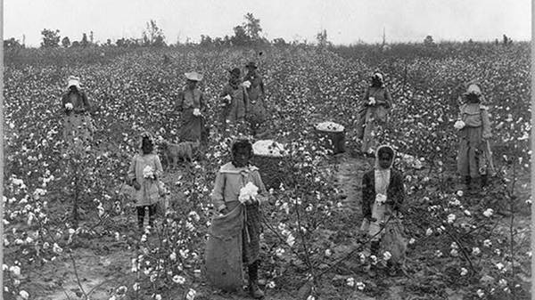 Sharecropping in Mississippi