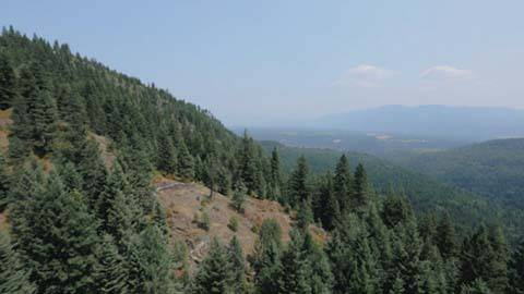 Ruby Ridge, Part One: Suspicion