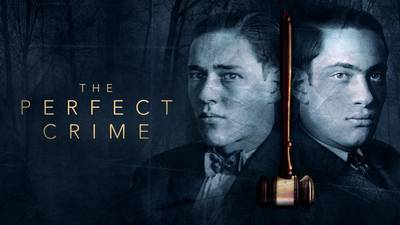 The Perfect Crime poster image