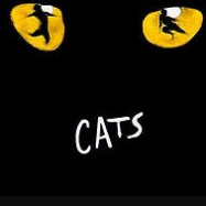 shows-cats