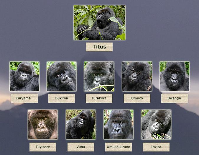 Titus\'s Family Tree