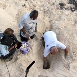 Biologists Felix Moncada and Gonzalo Nodarse dig up green turtle eggs for relocation. Cayo Largo, Cuba.
