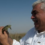 Dr. Azzam Alwash, director of marsh restoration project Nature Iraq, holds a soft-shelled turtle, a sign of returning life.