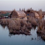 Traditional Marsh Arab reed houses
