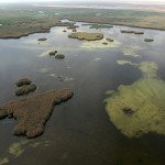 Ariel view of the Mesopotamian Marshes