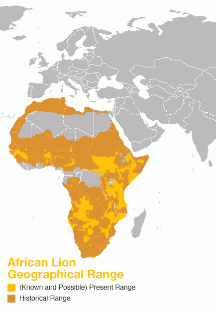 Lion Distribution Range