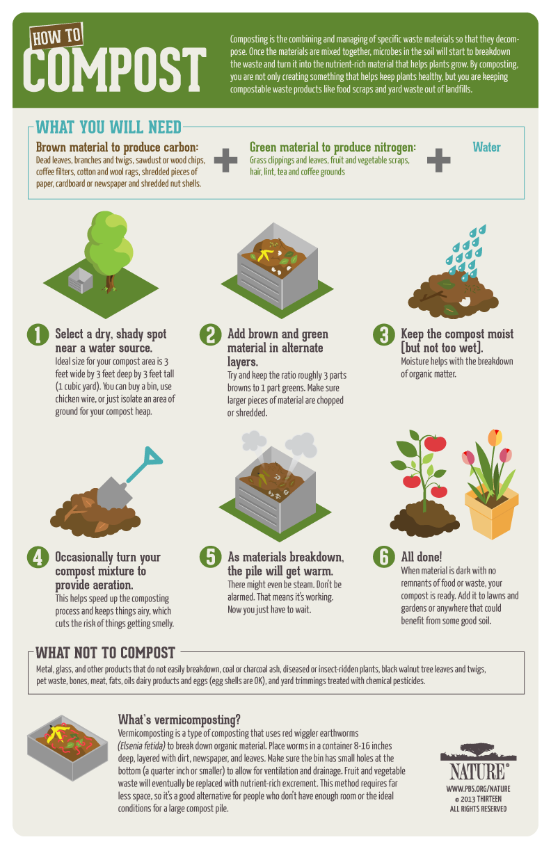 How-to Compost Poster, PBS Nature