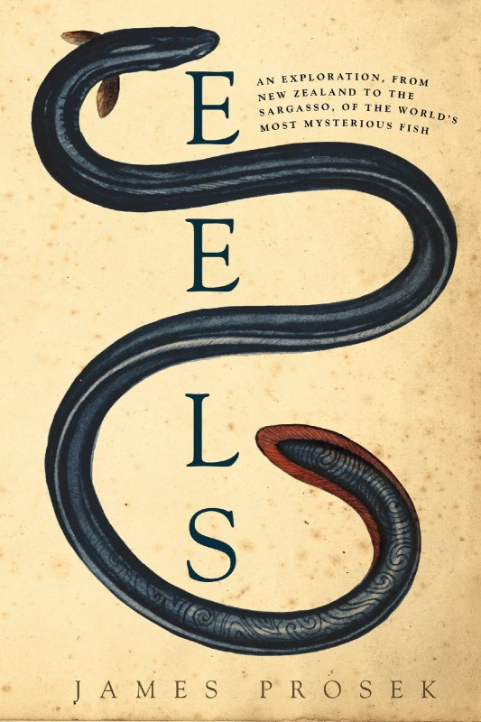 James Prosek: Eels: An Exploration, From New Zealand to the Sargasso, of the World's Most Mysterious Fish