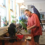 Marc Johnson, founder Foster Parrots, in his bird-filled home. Rockland, MA. Photo credit: ©2013 THIRTEEN