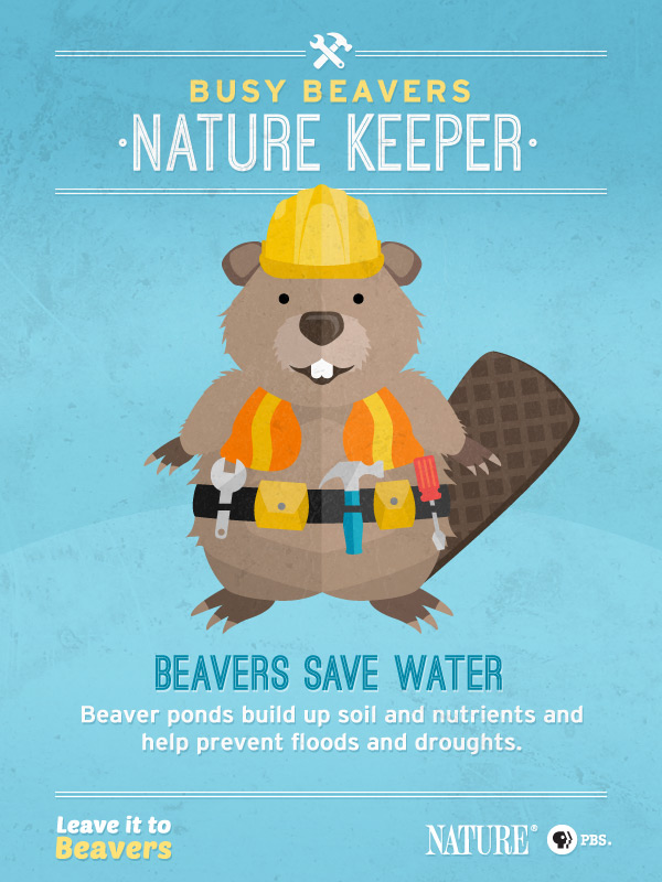 Leave it to Beavers: Nature Keeper