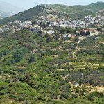 Due in part to their long history as a persecuted minority, Druze often live in villages that are located on higher ground. In the 1500s Druze villages prospered in the Chouf Mountains of southern Lebanon. The area of southern Syria where they live became known as Jabal al-Druze (mountain of the Druze). Ein Qinya, a Druze village near Mount Hermon Nature Reserve in Syria, is pictured above. A minority of Druze live in the Golan Heights region that Israel seized from Syria in 1967. There are about 120,000 Druze in Israel, or about 1.6 per cent of the population, located in eighteen villages, many of them exclusively Druze. Druze number about 230,000 in Lebanon, and about 420,00 in Syria, or about 4 percent of the population.