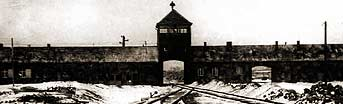 Auschwitz: Inside the Nazi State . Auschwitz 1940-1945 . Auschwitz and the Nazi Camp System | PBS