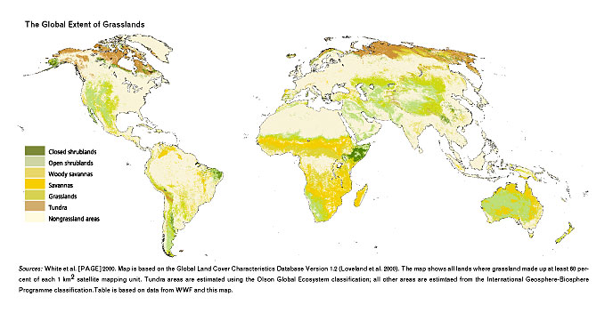 Pbs bill moyers reports earth on edge grasslands ecosystems map the global extent of grasslands gumiabroncs Gallery