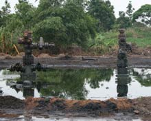 Pools of oil in the Niger delta.