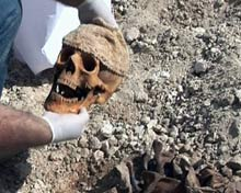 Skull removed from mass grave.