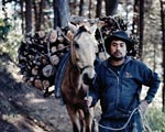 guatemalan man with horse