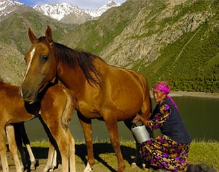 Frontline World Kyrgyzstan The Kidnapped Bride Photo