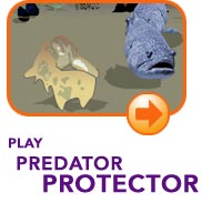 Play The Predator Protector Game!