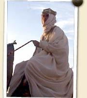 Lawrence of Arabia . Arab Warfare . Lawrence | PBS