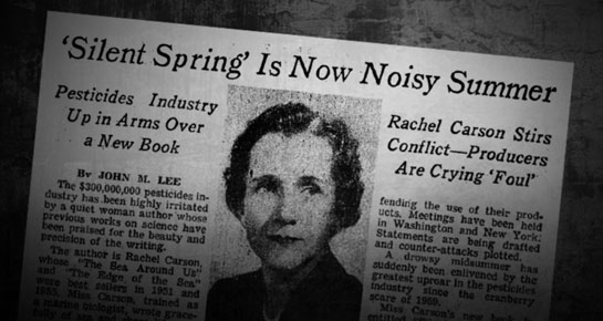 bill moyers journal photo essay pbs silent spring is now a noisy summer tk