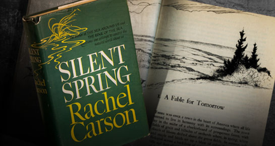 ... big bold biography of rachel carson whose long and often poetic essay