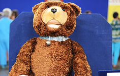 Article | How the Teddy Bear Got His Name