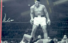 """Article 