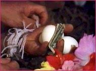 cordas amarradas em torno de pulsos de mão segurando ovos e dinheiro como parte do ritual