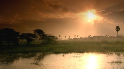 Video: Tamil Nadu, the world's last surviving classical civilization