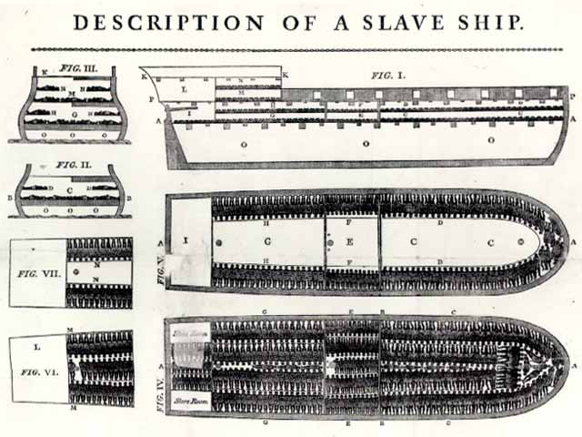 Plan of a Ship for Transporting Slaves