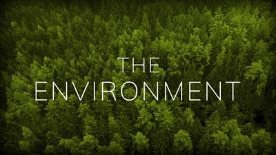 The Environment Collection poster image