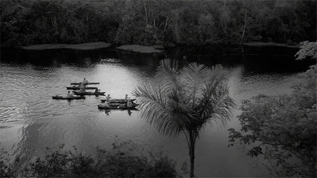 Into the Amazon: Trailer