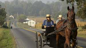 Questions About the Amish poster image