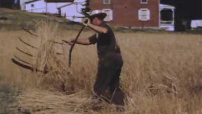 Cradling Wheat poster image