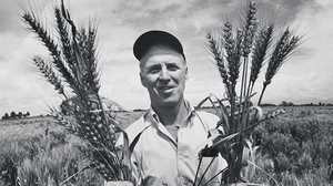 'No Silver Bullet Solution': Norman Borlaug and the Green Revolution poster image