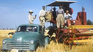 """Caught Up in the War on Communism: Norman Borlaug and the """"Green Revolution"""" poster image"""