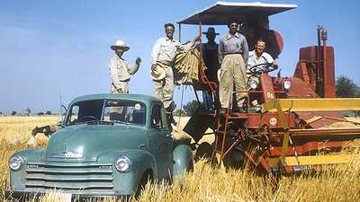 "Caught Up in the War on Communism: Norman Borlaug and the ""Green Revolution"" poster image"