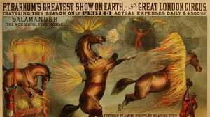 Animal Welfare and the Circus: The Jack London Club poster image