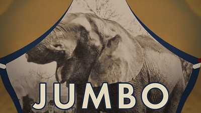 Jumbo the Elephant poster image