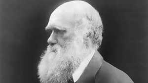 Darwin's Letter to Marsh poster image